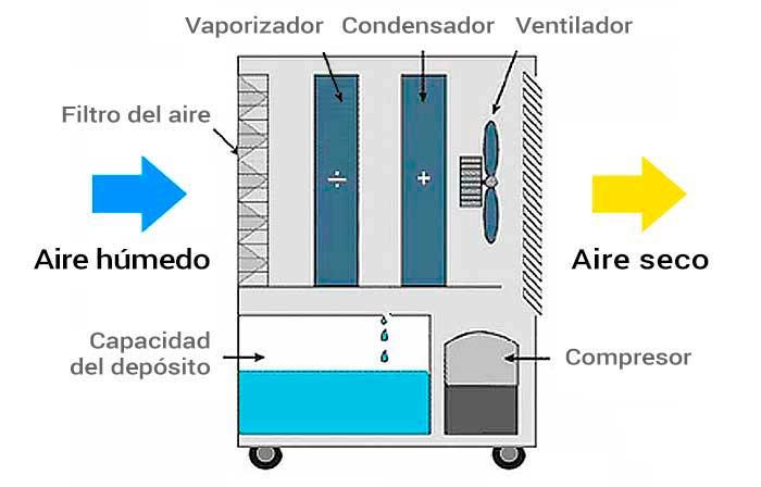 Reducir la humedad con un deshumidificador - Tipos de deshumidificadores ...